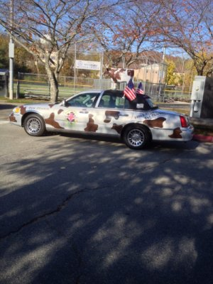 The New Car at the 2014 Veterans Day Parade