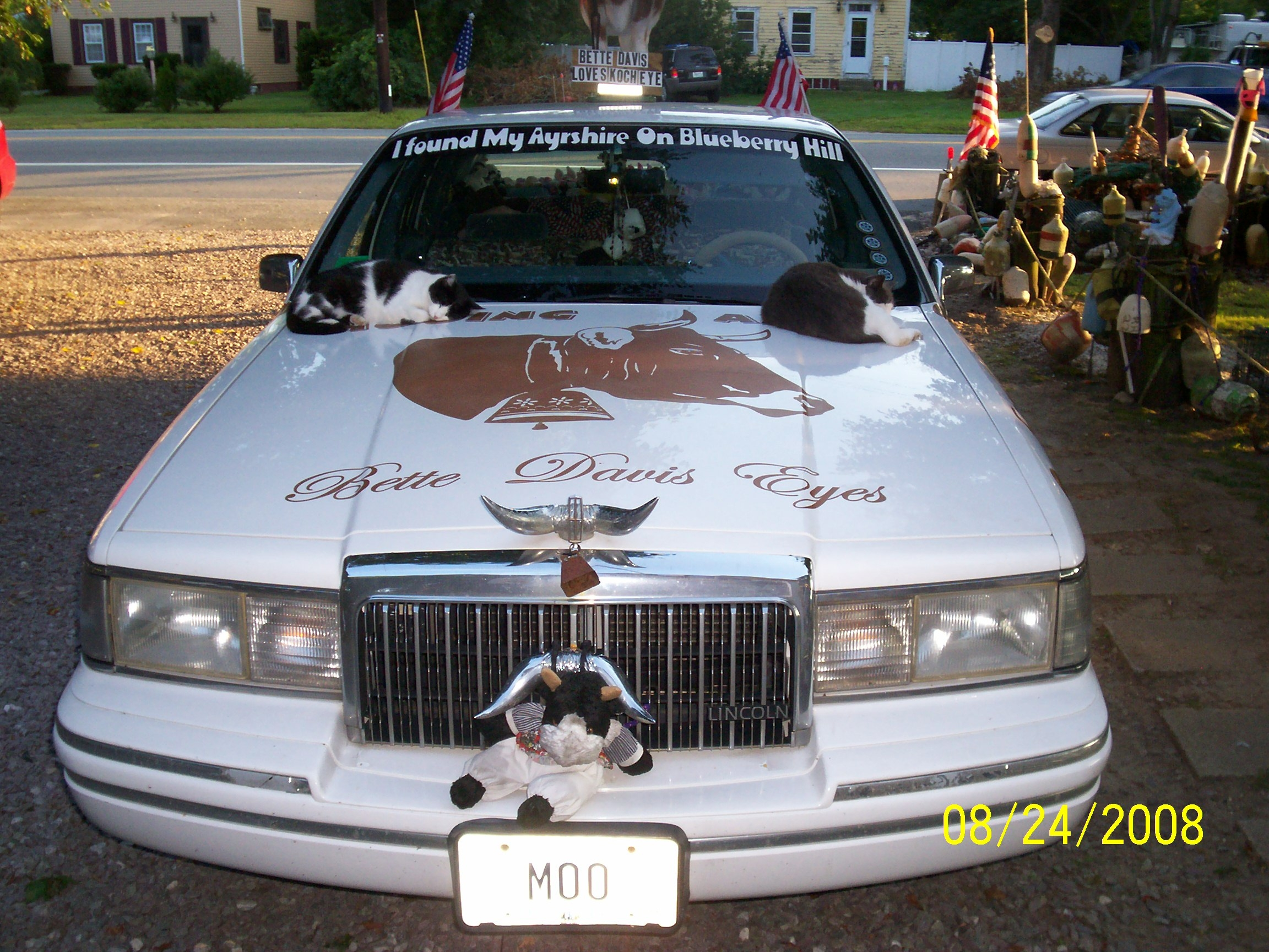 Cowcar/Carphoto11.JPG